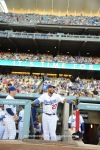 LOS ANGELES DODGERS VS ST. LOUIS CARDINALS