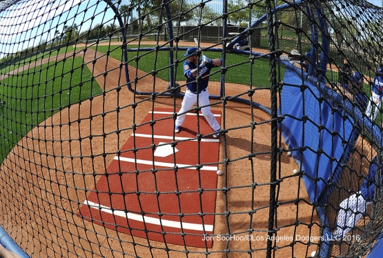 Los Angeles Dodgers Yasmani Grandal hits during workout Tuesday, February 23, 2016 at Camelback Ranch-Glendale in Phoenix, Arizona. Photo by Jon SooHoo/©Los Angeles Dodgers,LLC 2016