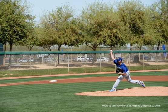 Los Angeles Dodgers Chris Hatchers pitches during workout Wednesday, March 2, 2016 at Camelback Ranch-Glendale in Phoenix, Arizona.