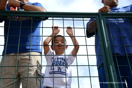 GREAT Los Angeles Dodgers fan prior to game against the Arizona Diamondbacks  Saturday, March 5, 2016 at Camelback Ranch-Glendale in Phoenix, Arizona.