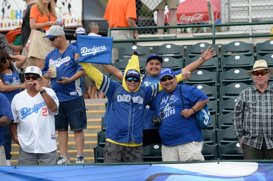 GREAT Los Angeles Dodger fans at Scottsdale Stadium Sunday, March 6, 2016