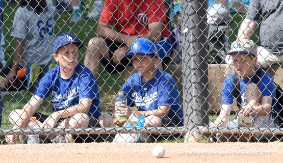 Great Los Angeles Dodgers fans workout Sunday, March 20, 2016 at Camelback Ranch-Glendale in Phoenix, Arizona.