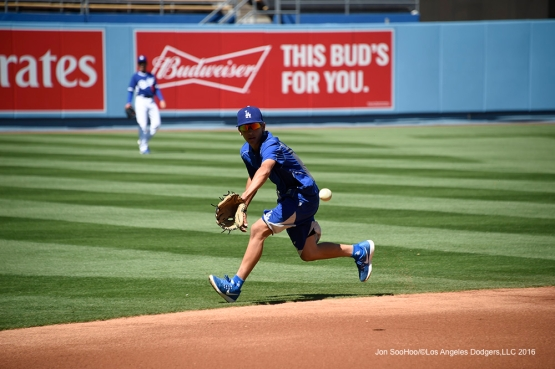 Los Angeles Dodgers Cole Roberts takes ground balls prior to game against San Francisco Giants Saturday, April 16, 2016 at Dodger Stadium.