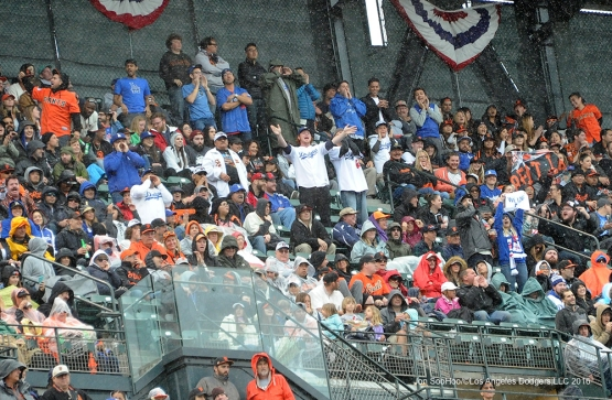 Great Los Angeles Dodger fans during game against the San Francisco Giants Saturday, April 9, 2016 at AT&T Park in San Francisco,California. The Dodgers beat the Giants 3-2.