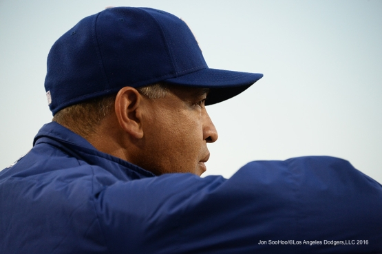 Los Angeles Dodgers Dave Roberts during game against the New York Mets Thursday, May 12, 2016 at Dodger Stadium in Los Angeles,California.  Jon SooHoo/©Los Angeles Dodgers,LLC 2016