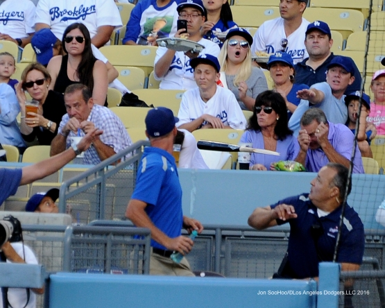Bat attack Friday, July 1, 2016 at Dodger Stadium in Los Angeles, California. Photo by Jon SooHoo/©Los Angeles Dodgers,LLC 2016