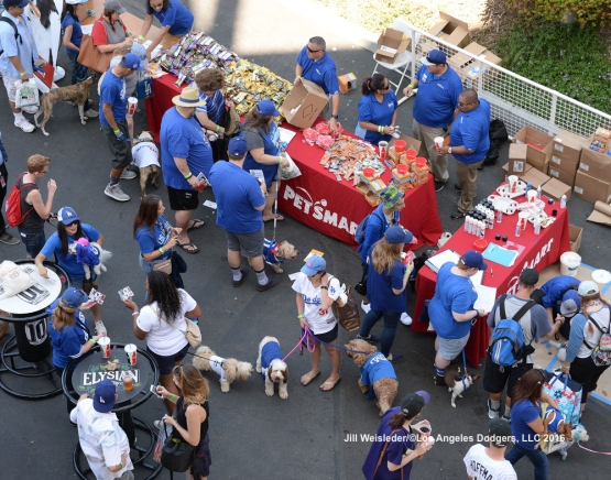 Fans and dogs mingle as they get ready to watch the Dodgers take on the Padres. Jill Weisleder/LA Dodgers